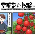 【マギアレコード】マギレコ公式マンガ「マギア☆レポート」30話が更新!